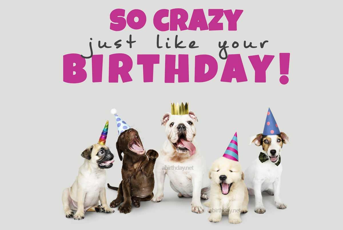 Puppy Birthday Wishes