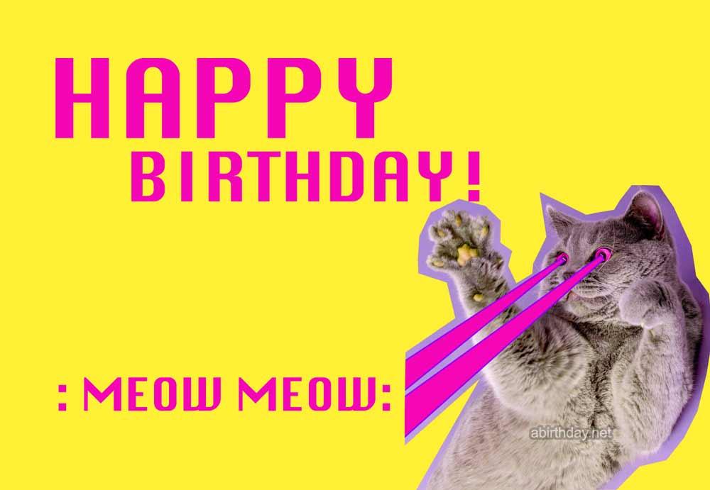 Crazy Cat Birthday Meme